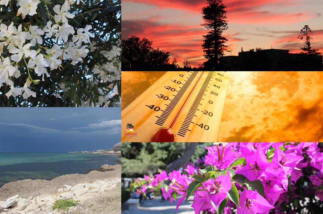 Pory roku na Sycylii, Sycylia, Trapani, pory roku, lato na Sycylii, wiosna na Sycylii, jesień na Sycylii, zima na Sycylii, wiosna, lato, jsień, zima, Kwitnący migdałowiec, migdałowiec, termometr, upał, gorąco, śnieg, zima w Erice, śnieg w Erice, Erice zimą, bugenville, Villa Margherita Trapani, Villa Margherita